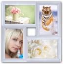 Пластиковая мультирамка Классика на 4 фото белая