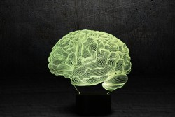 "3D ночник ""Мозг"""