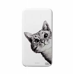 Power Bank Эй, Кот!