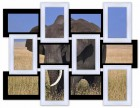 Деревянная мультирамка Классика на 12 фото черно-белая