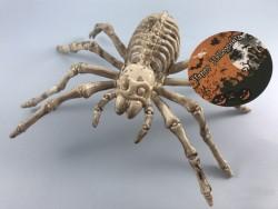 Скелет паук светлый мигающий