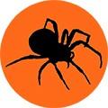 Паутина и пауки на Хэллоуин