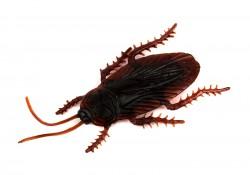 Прикол таракан большой пластмассовый 5 см