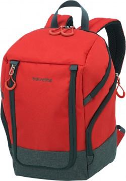 BASICS/Red Рюкзак Ryan-Air (14л,0,5кг) (20x35x20см)