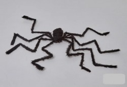 Паук черный 2 метра