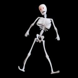 Скелет резиновый 30см