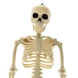 Декор на Хэллоуин  Скелет  165 см