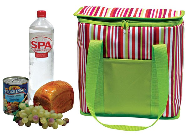 Изотермическая сумка-холодильник  TE-3020SX
