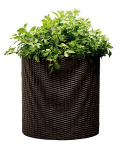 Горшок для цветов Cylinder Planter Medium коричневый