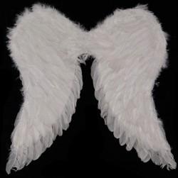 Крылья Амура большие