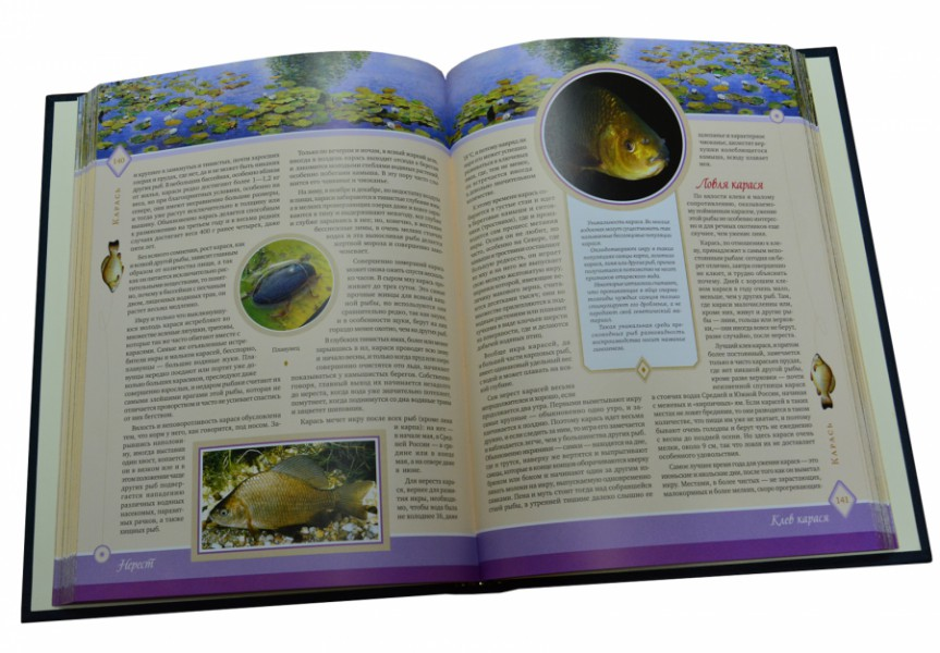 Жизнь и ловля пресноводных рыб. Леонид Сабанеев. В футляре, коричневая