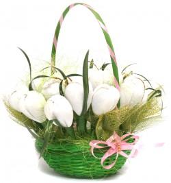 Корзина белых тюльпанов