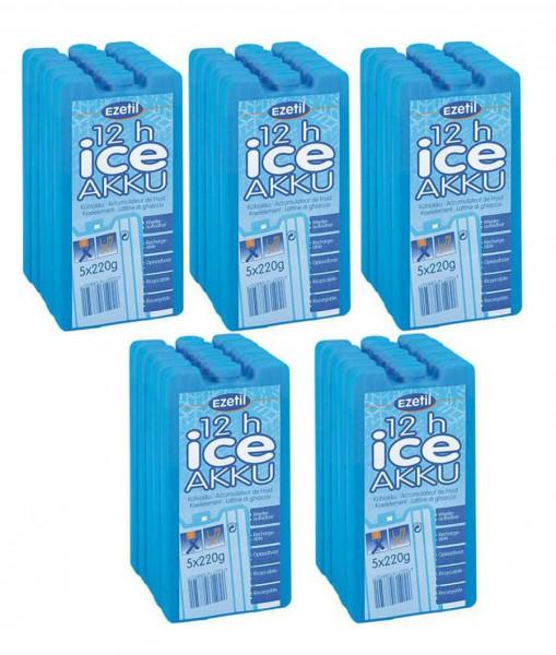 Комплект аккумуляторов холода Ice Akku 5х220 х5шт