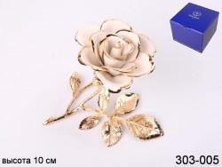 Роза декоротивная белая