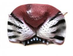 Нос тигра